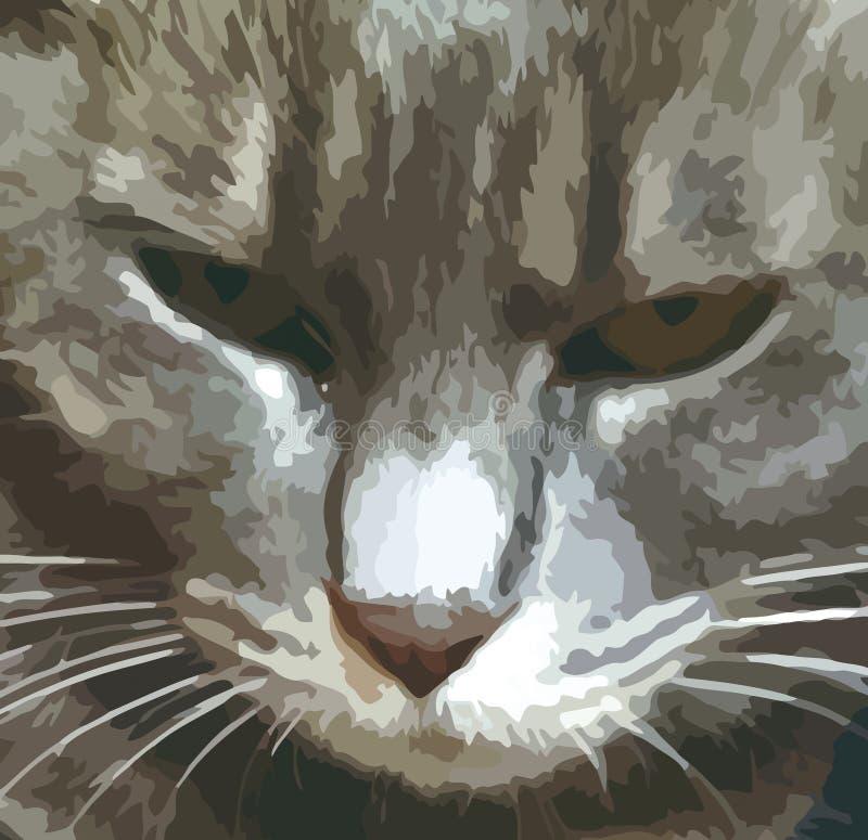 猫的面孔,说明图画的特写镜头视图 向量例证