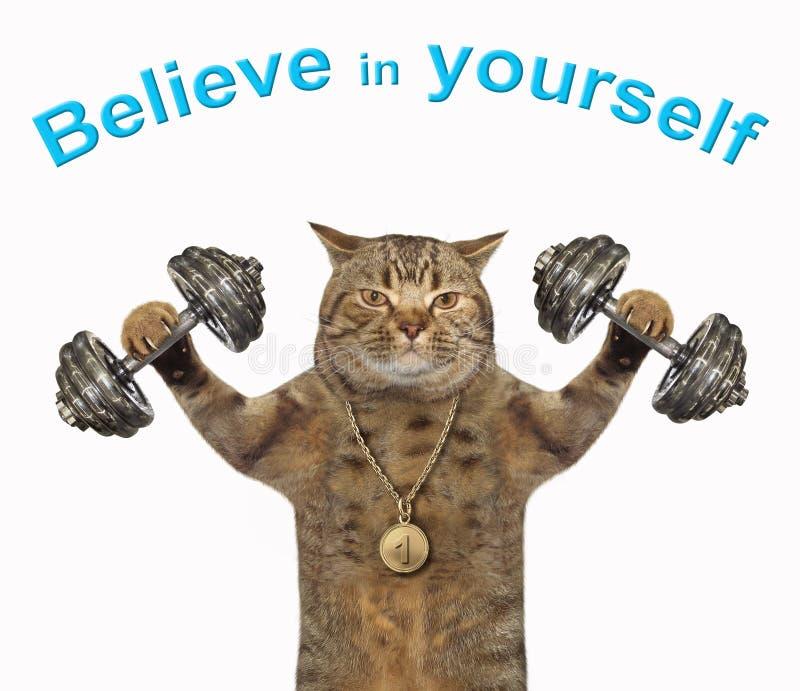 猫运动员举哑铃2 免版税库存照片
