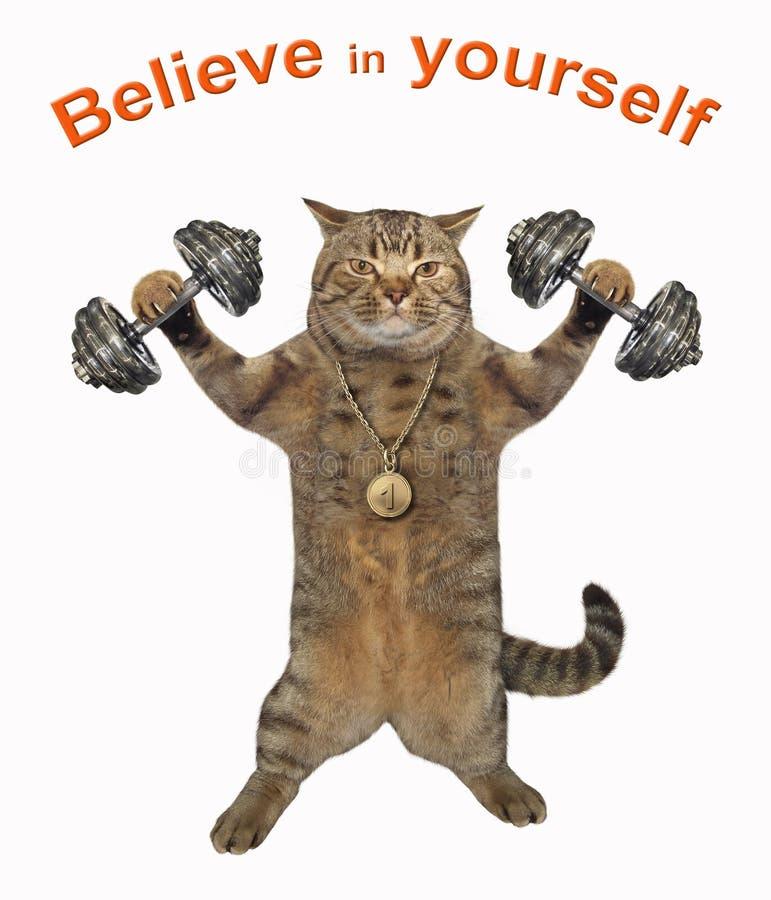 猫运动员举哑铃 库存照片