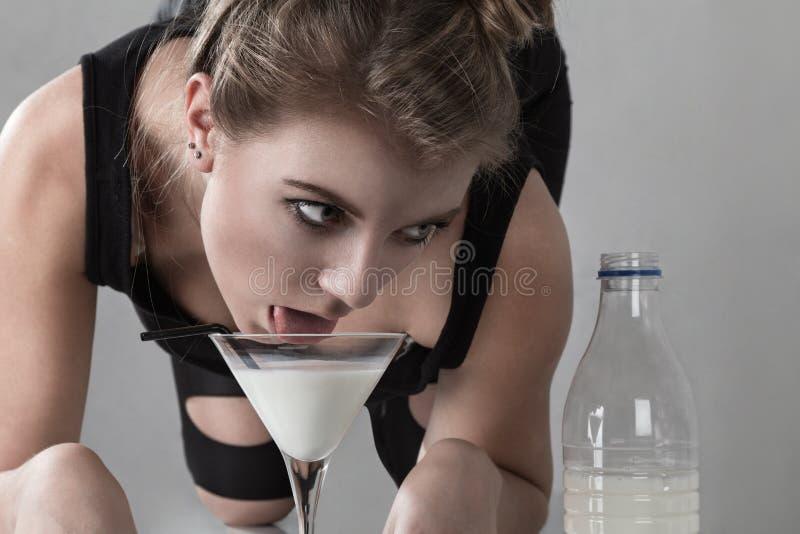 猫饮用奶妇女 库存图片