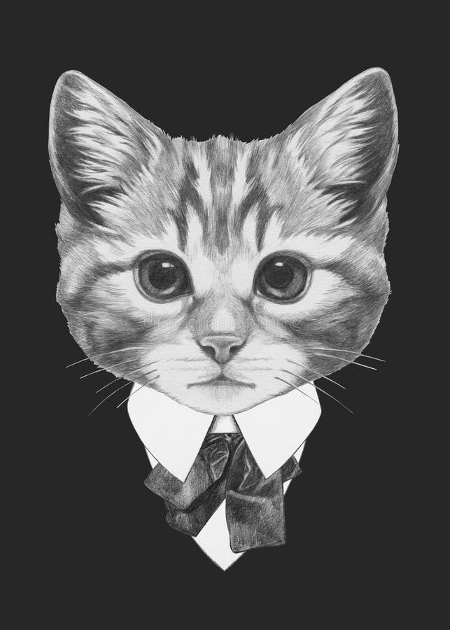 猫画象在衣服的 皇族释放例证