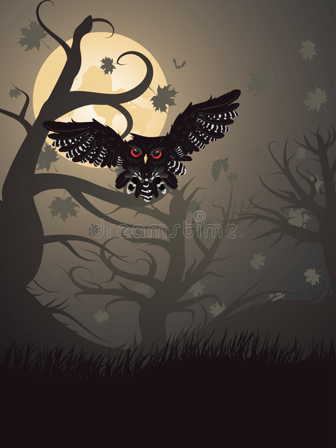 猫头鹰在夜森林里 向量例证