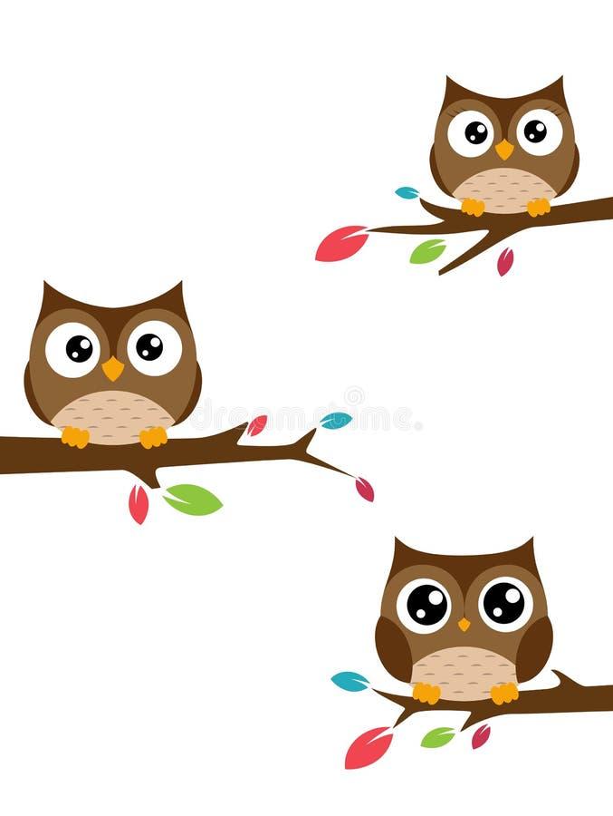 猫头鹰家庭坐树枝 库存例证