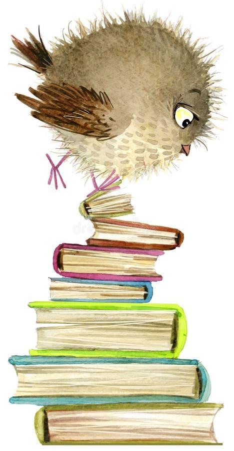 猫头鹰 逗人喜爱的猫头鹰 水彩森林鸟 学校例证 动画片鸟 库存例证