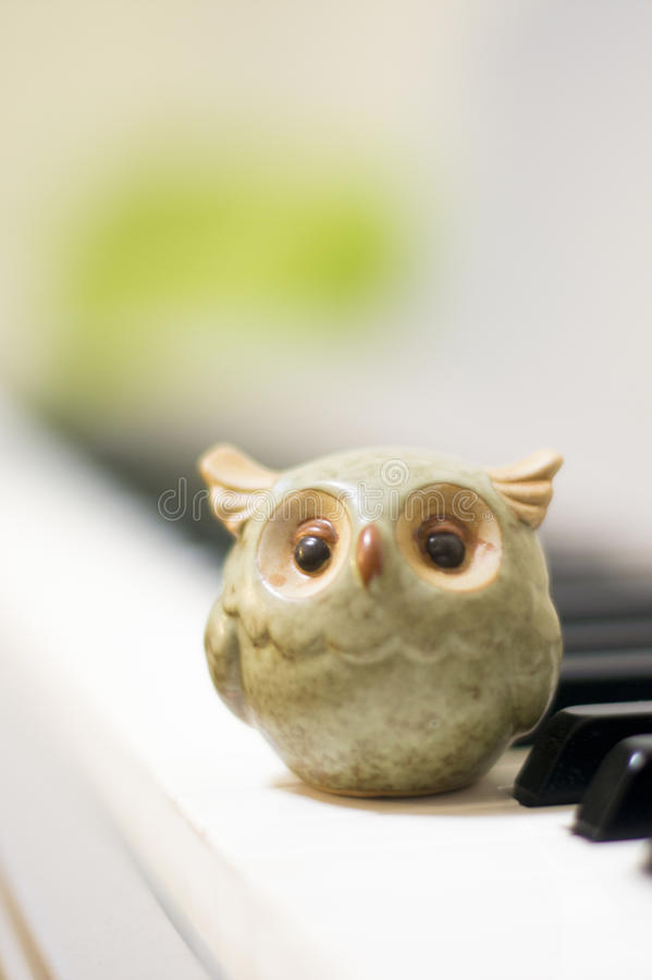 猫头鹰 免版税图库摄影