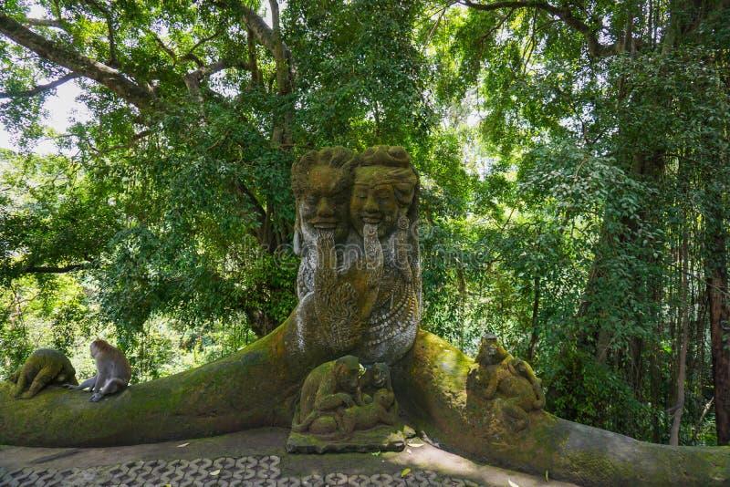 猴子坐一个石雕塑在神圣的猴子森林在Ubud,海岛巴厘岛,印度尼西亚 免版税库存图片
