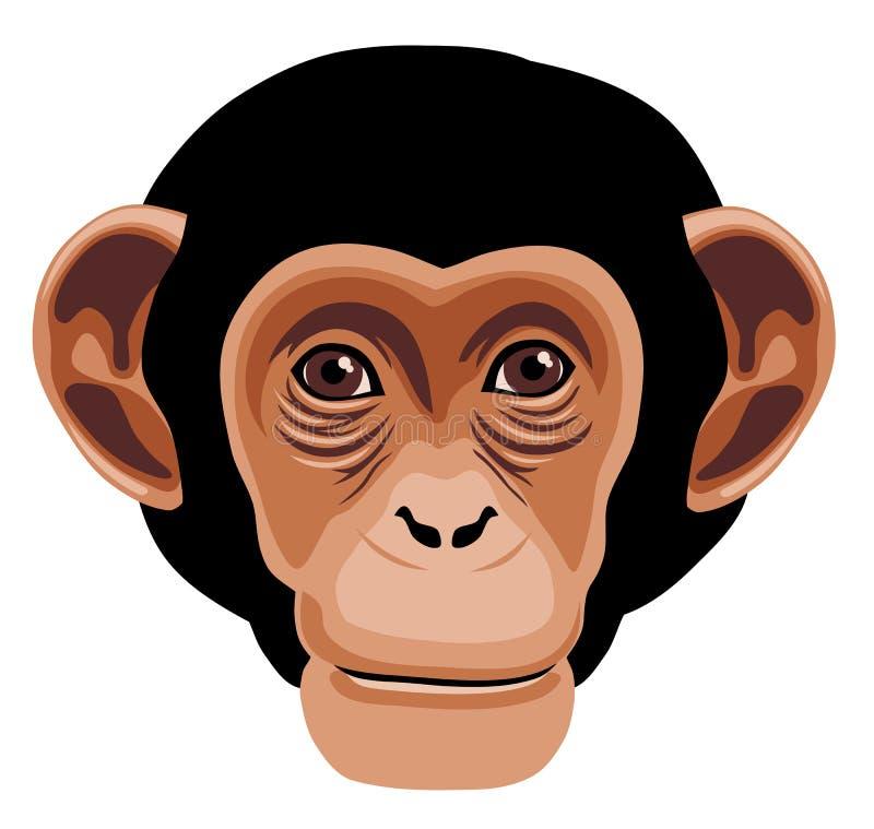 猴子 向量例证