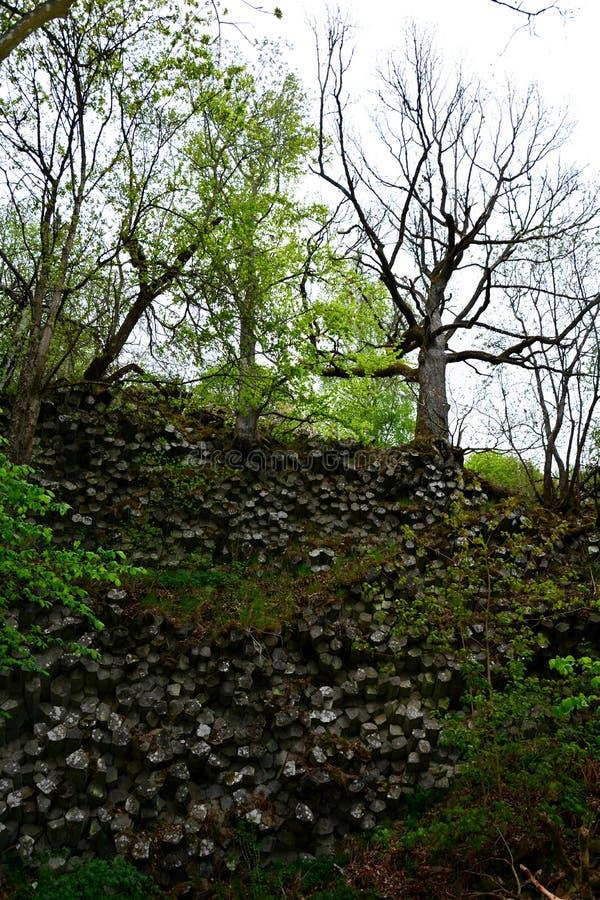 玄武岩专栏-棱镜墙壁在德国,巴伐利亚 免版税图库摄影