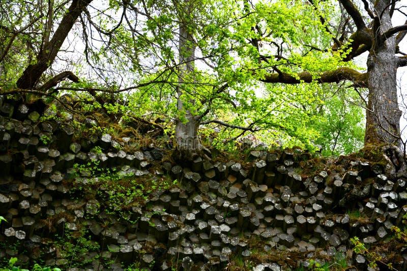 玄武岩专栏-棱镜墙壁在德国 库存照片