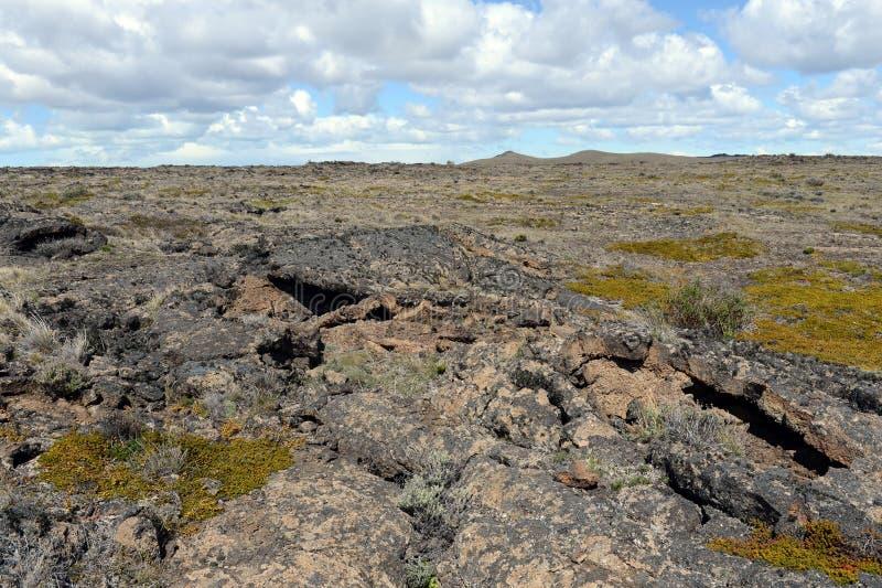 玄武岩火山石在国家公园梵语Aike 库存照片