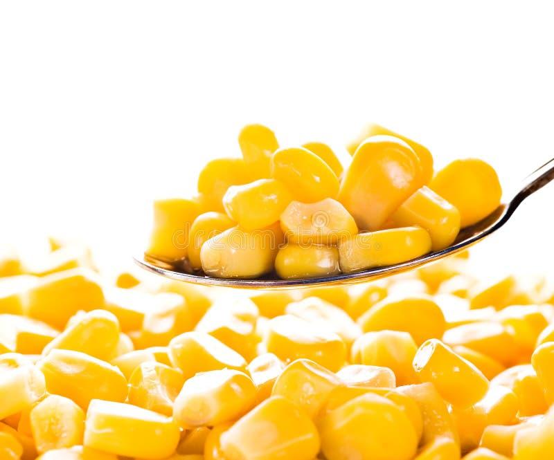 玉米匙子 库存图片