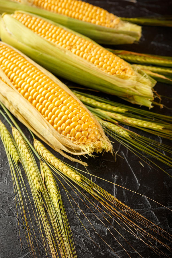 玉米和麦子钉 库存图片