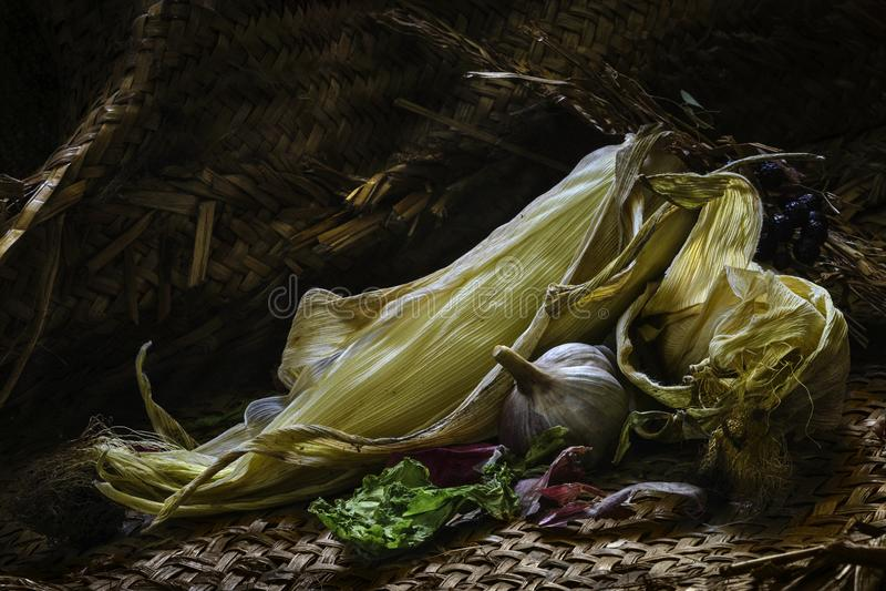 玉米大蒜混合的产物 免版税库存照片