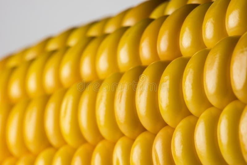 玉米抽象细节  免版税库存照片