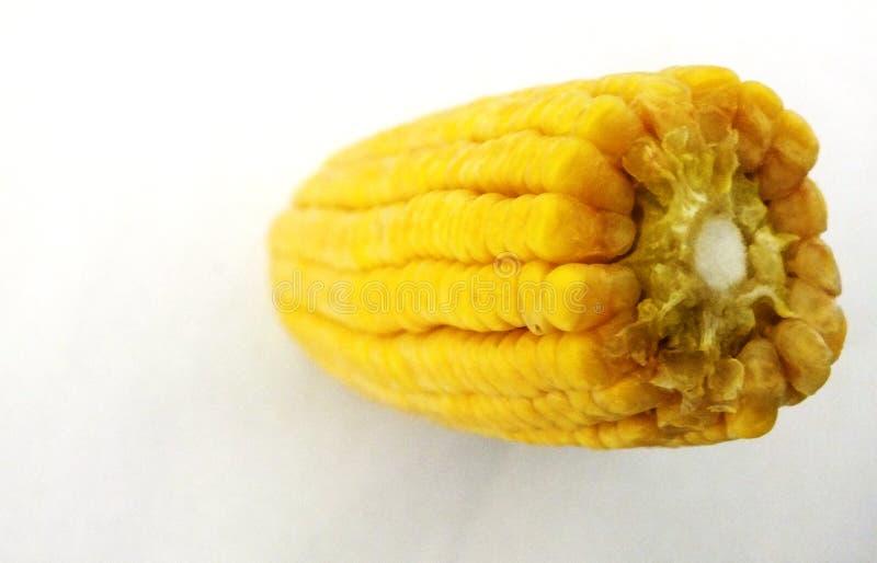 玉米棒子玉米五谷垂直 库存照片