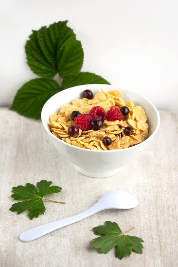 玉米片用在白色板材的莓果 免版税库存图片