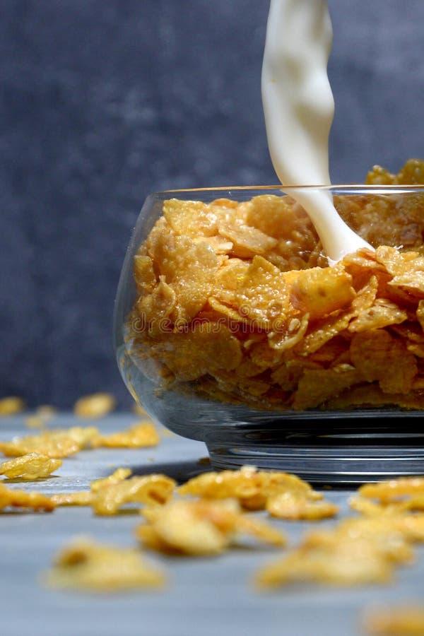 玉米片用牛奶 免版税库存图片