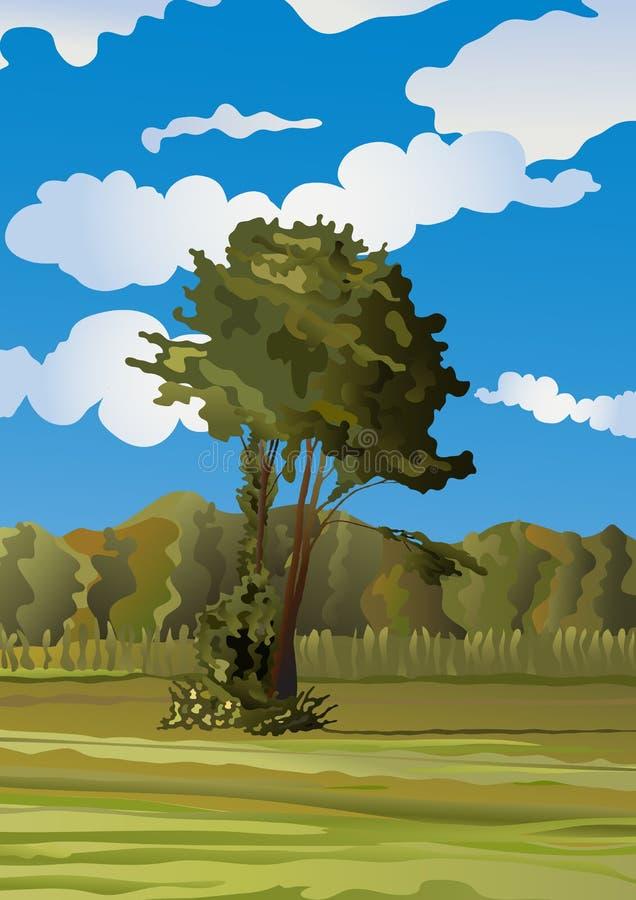 玉米田偏僻的草甸结构树 皇族释放例证