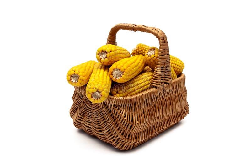 玉米穗在一个篮子的在白色背景.图片