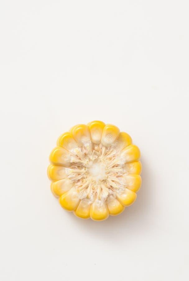 玉米穗的裁减在白色的 重婚 库存照片