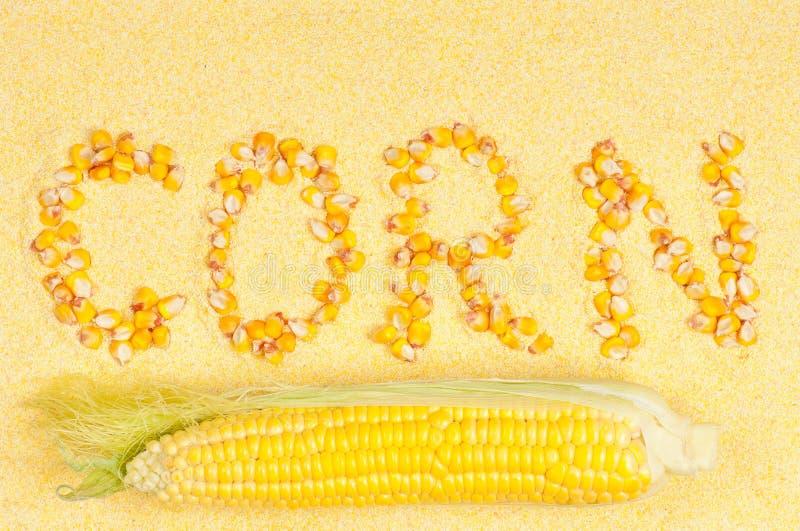 玉米粉 库存照片