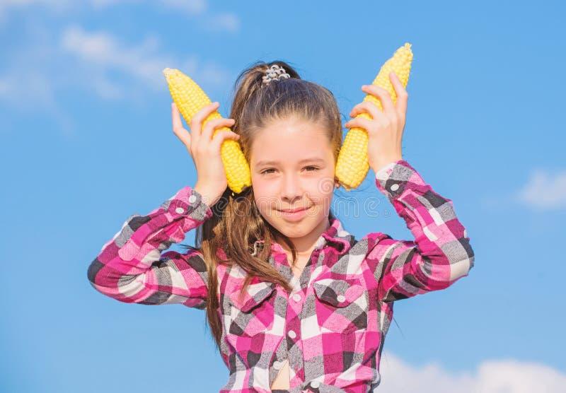 玉米素食主义者和健康有机产品 r 在天空的孩子女孩举行黄色玉米棒子 免版税库存图片