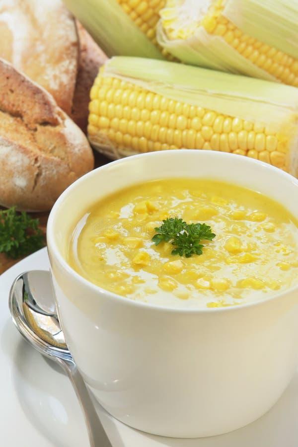 玉米荷兰芹汤 免版税图库摄影