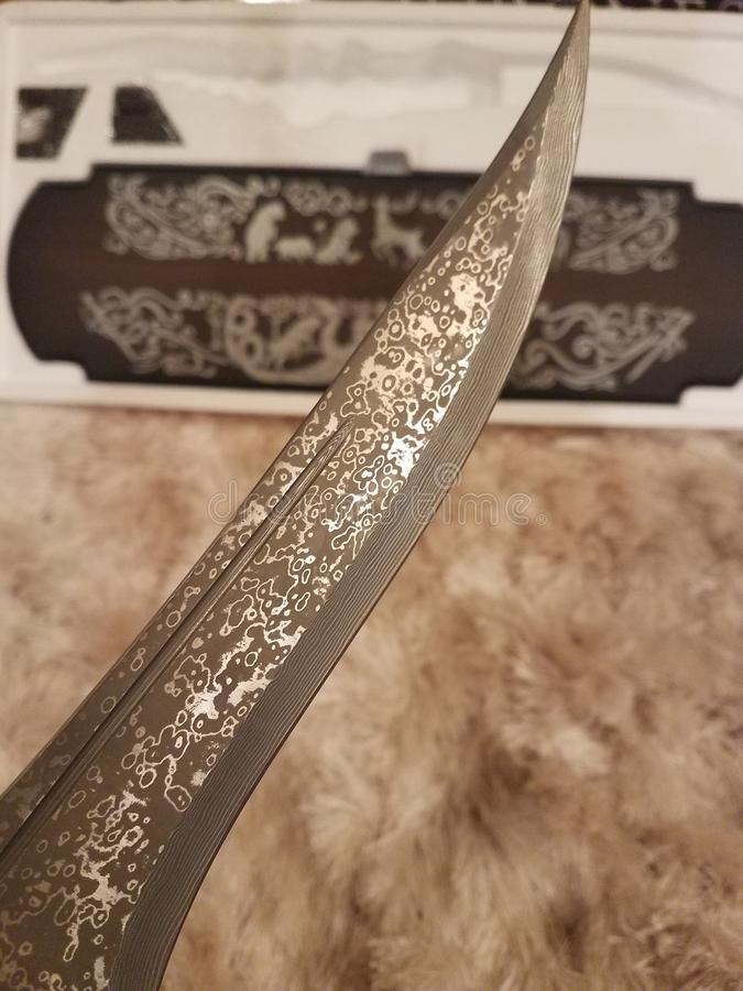 王位匕首比赛  免版税库存照片
