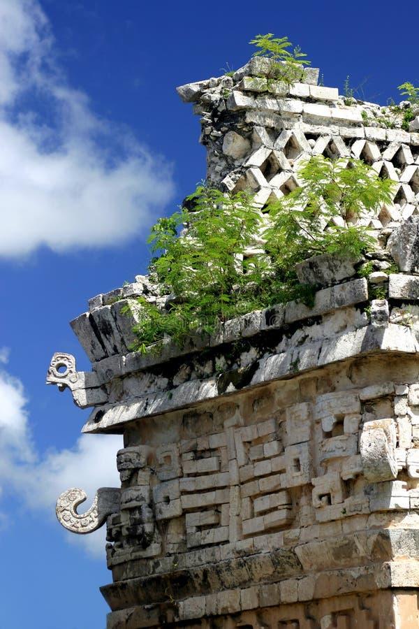 玛雅人废墟 免版税图库摄影