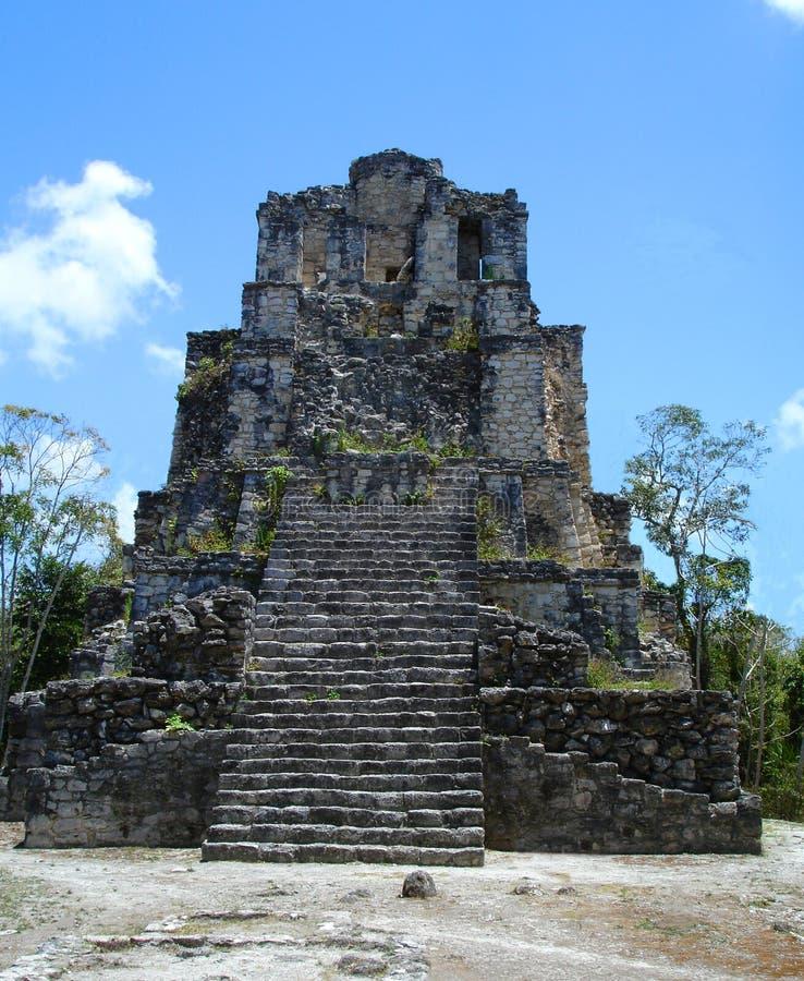 玛雅墨西哥muyil废墟 库存照片