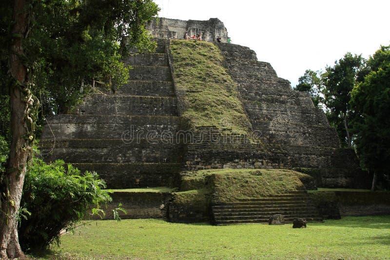 玛雅寺庙废墟的游人在Yaxha,危地马拉的 库存图片