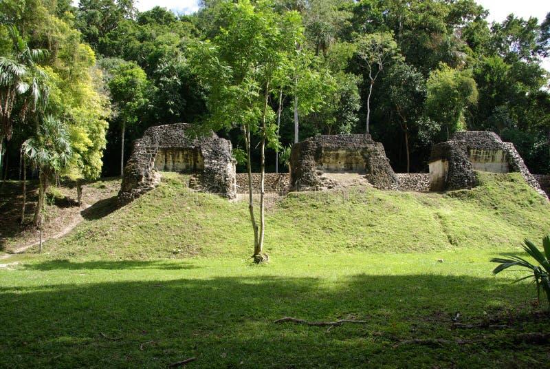 玛雅废墟在危地马拉 库存图片