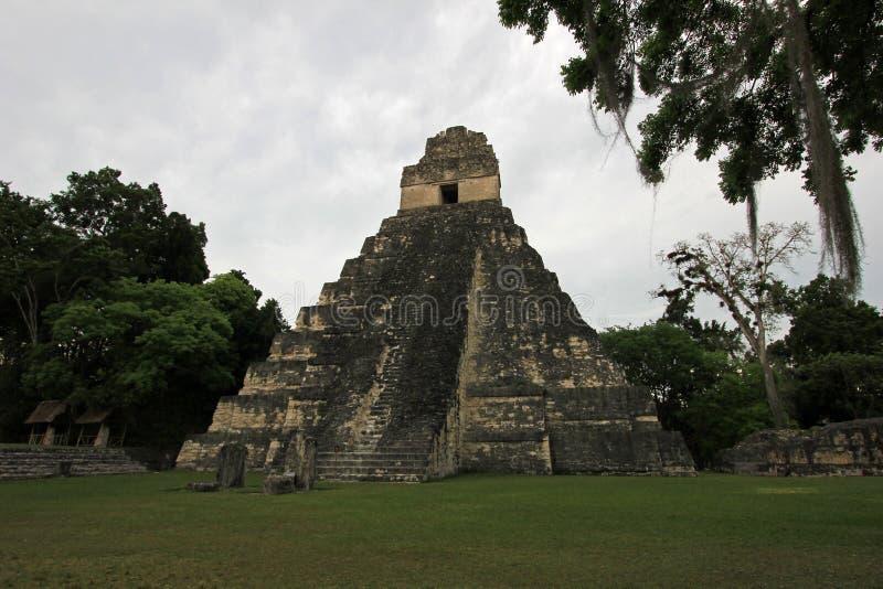 玛雅废墟蒂卡尔危地马拉 免版税库存照片