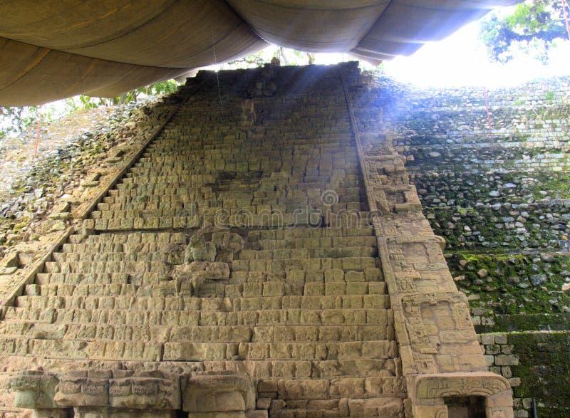 玛雅皇家血统跨步, Copan废墟,洪都拉斯 库存图片