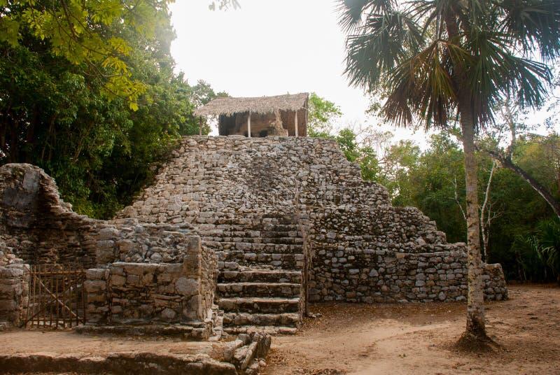 玛雅金字塔在科巴 墨西哥 尤加坦 免版税库存图片
