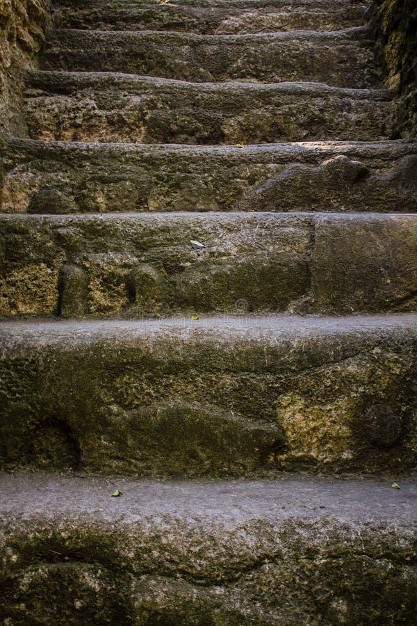 玛雅piramide楼梯蒂卡尔危地马拉 库存照片
