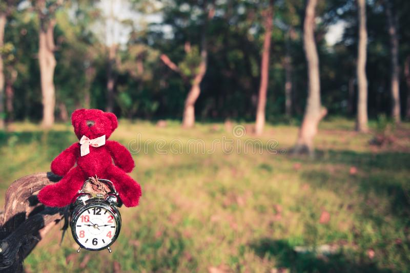 玩具熊和减速火箭的闹钟在废墟在庭院里 免版税库存图片