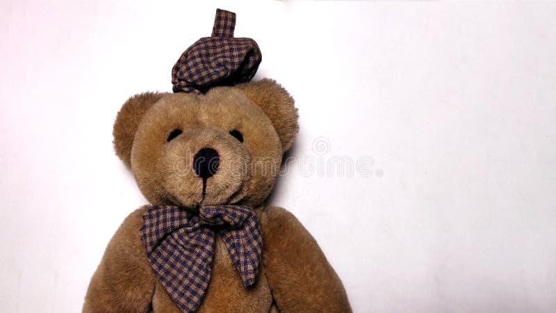 玩具熊有白色背景 免版税库存照片