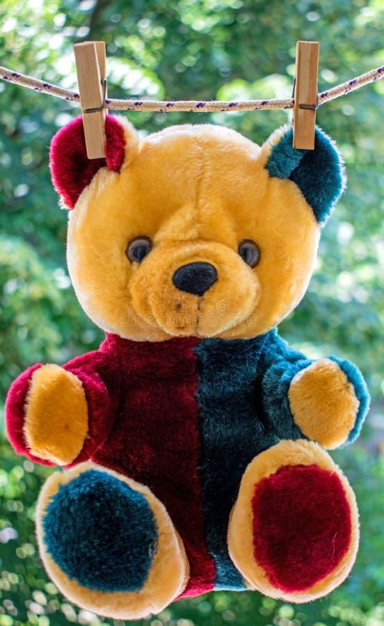 玩具熊 在洗浴以后,熊在导线烘干在阳光下 免版税图库摄影