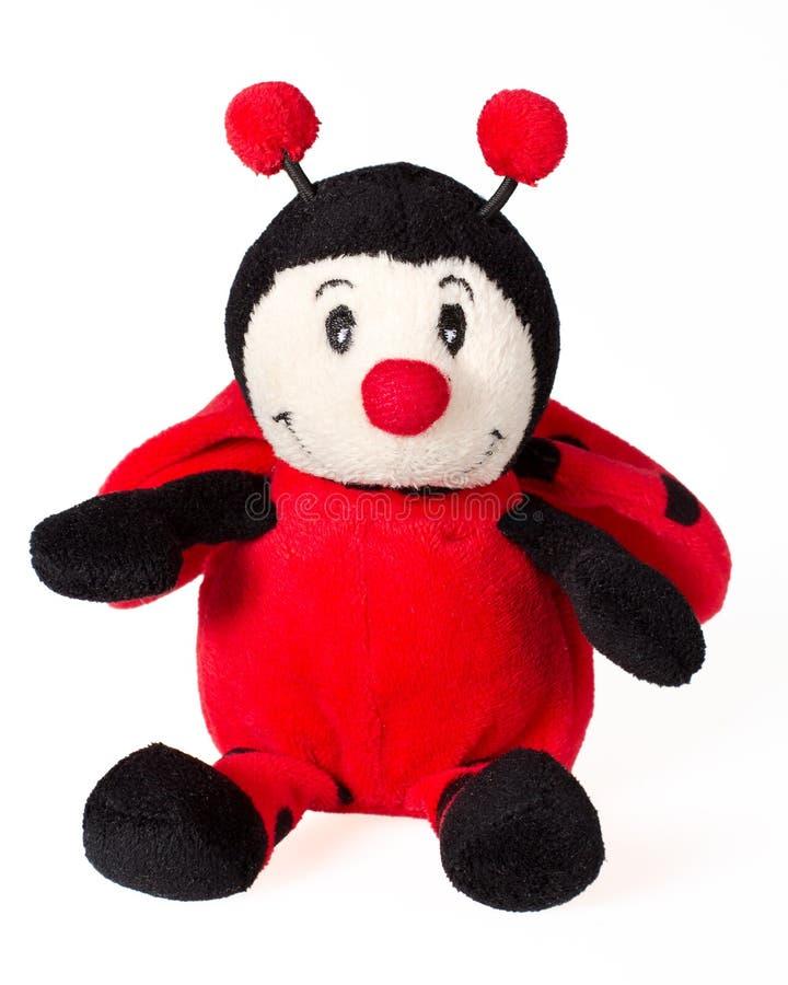 玩具瓢虫,红色软的长毛绒玩具被隔绝在白色背景 免版税库存图片