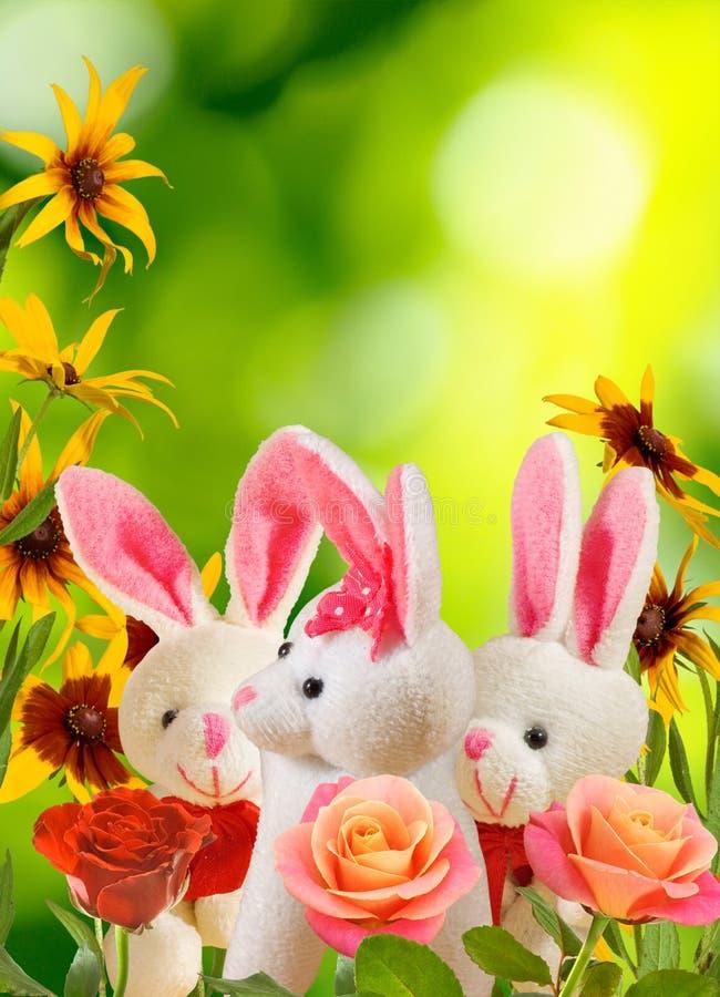 玩具野兔和花在庭院里 库存照片