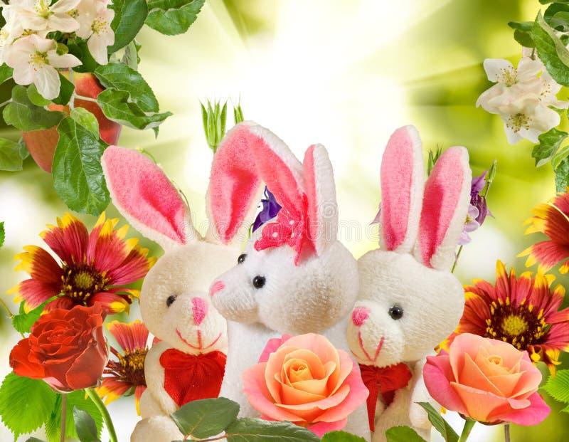 玩具野兔和花的图象在庭院里 免版税库存照片