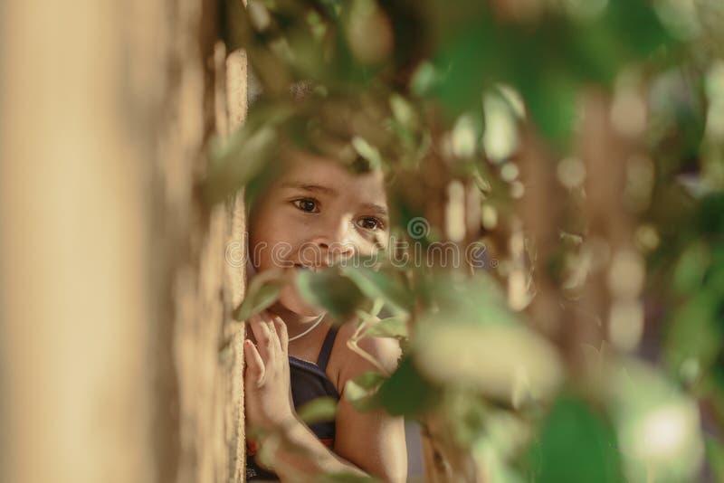 玩捉迷藏的小孩女孩在夏天 免版税库存照片