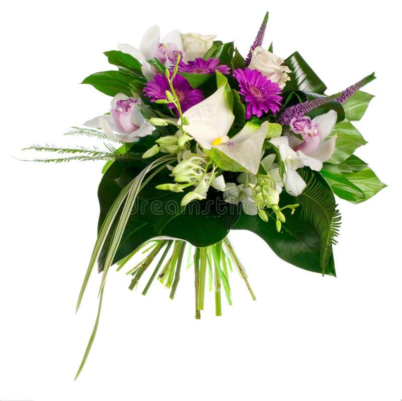 玫瑰、大丁草、兰花和安祖花花束  免版税图库摄影