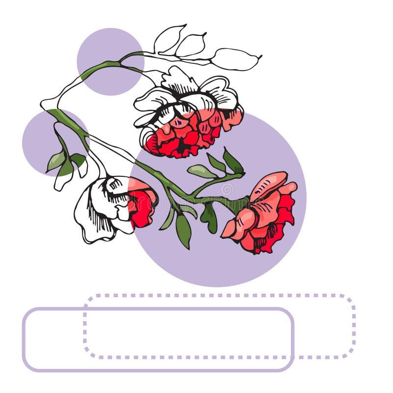 玫瑰、淡紫色圈子和框架开花的红色花的汇集  r 库存例证