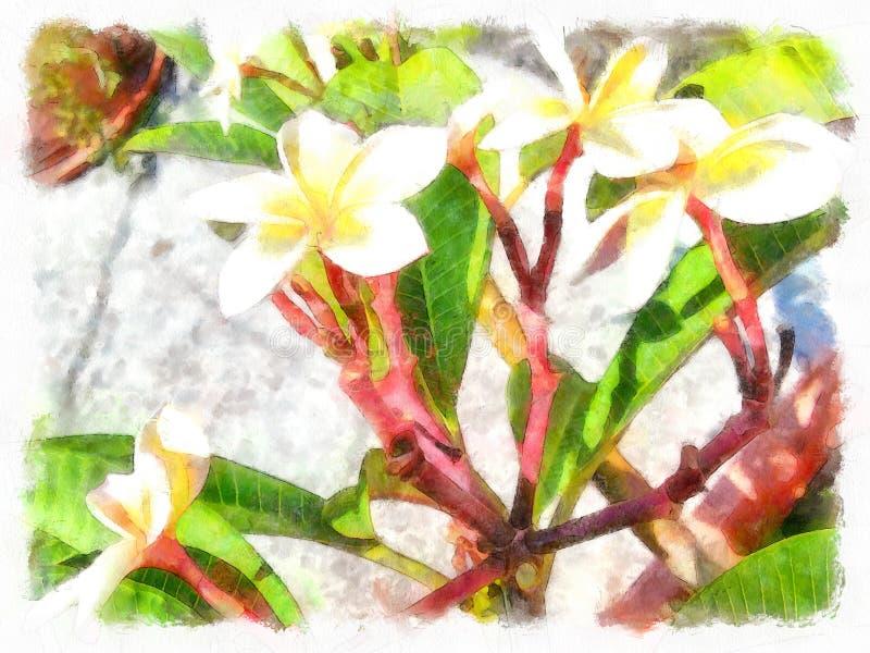玫瑰丛在老西班牙庭院里 瓣粉红色上升了 皇族释放例证