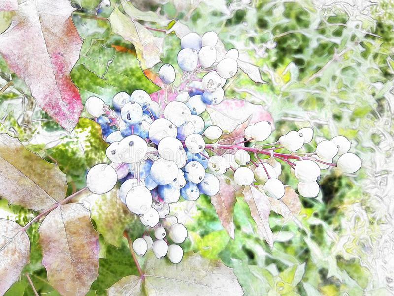 玫瑰丛在老西班牙庭院里 瓣粉红色上升了 库存例证