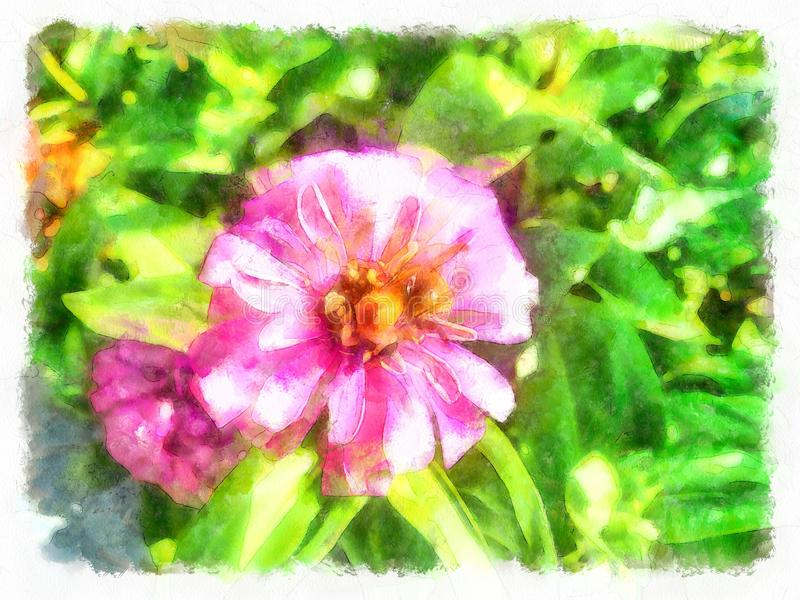 玫瑰丛在老西班牙庭院里 瓣粉红色上升了 向量例证