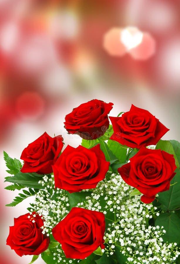 玫瑰为情人节 免版税库存图片