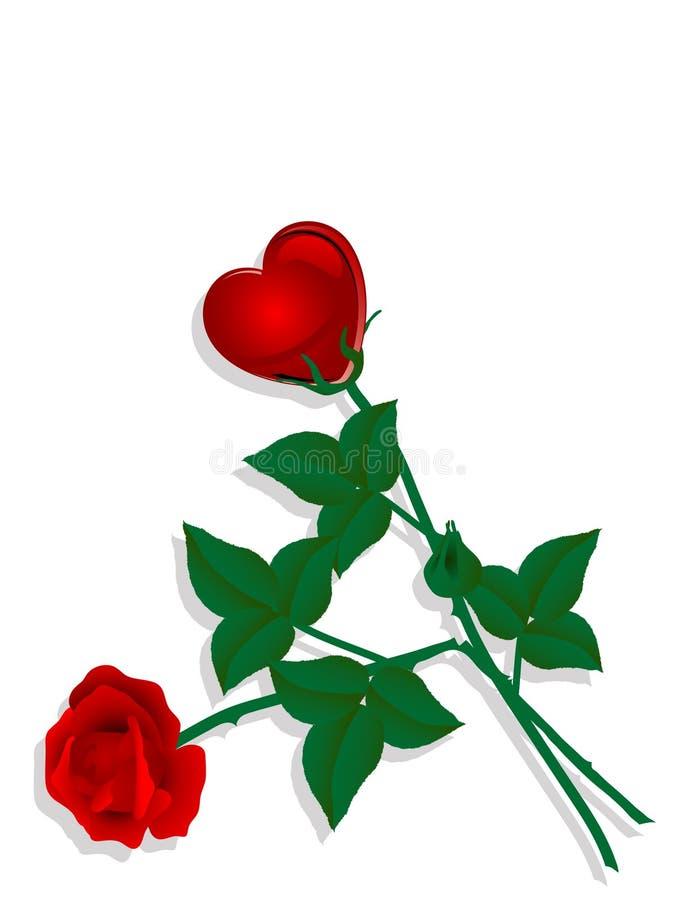 玫瑰二 库存例证